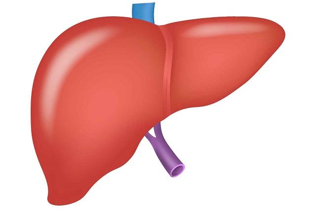 西宮の肝臓内科なら大岡クリニック